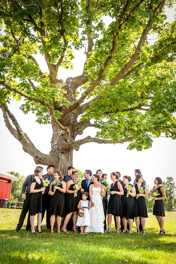 Wedding party huddling up underneath a giant oak tree at Gale Woods Farm