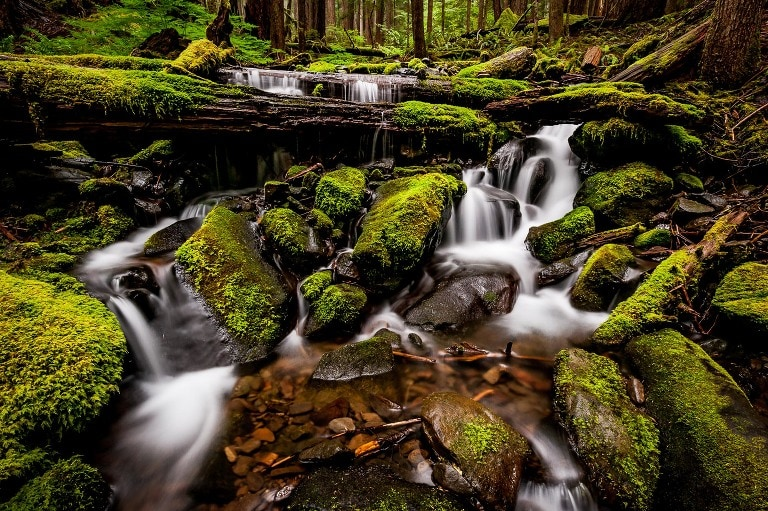 Long exposure image of a small but very green and unique waterfall in the Sol Duc Falls area of Olympic National Park