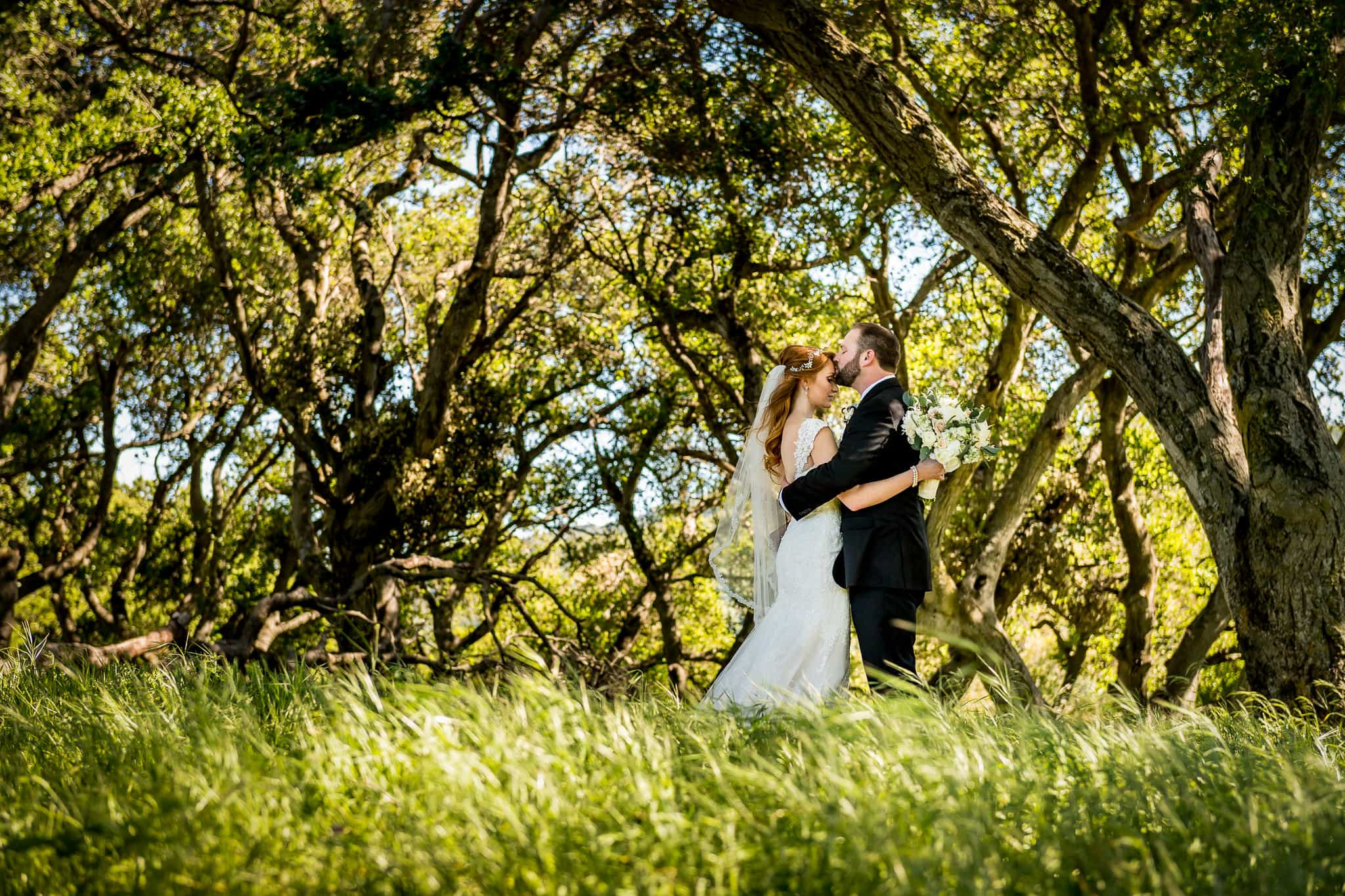 Picchetti Winery wedding photograph of couple holding each other closely in a grassy wooded area