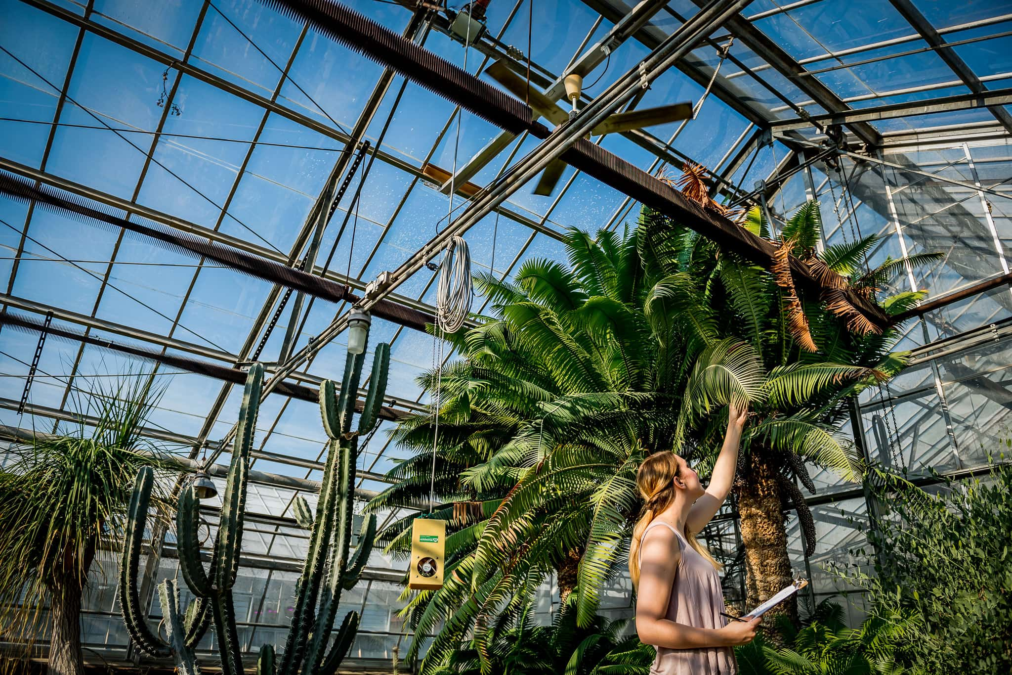 Student taking measurements inside the University of Minnesota Biological Sciences Greenhouse