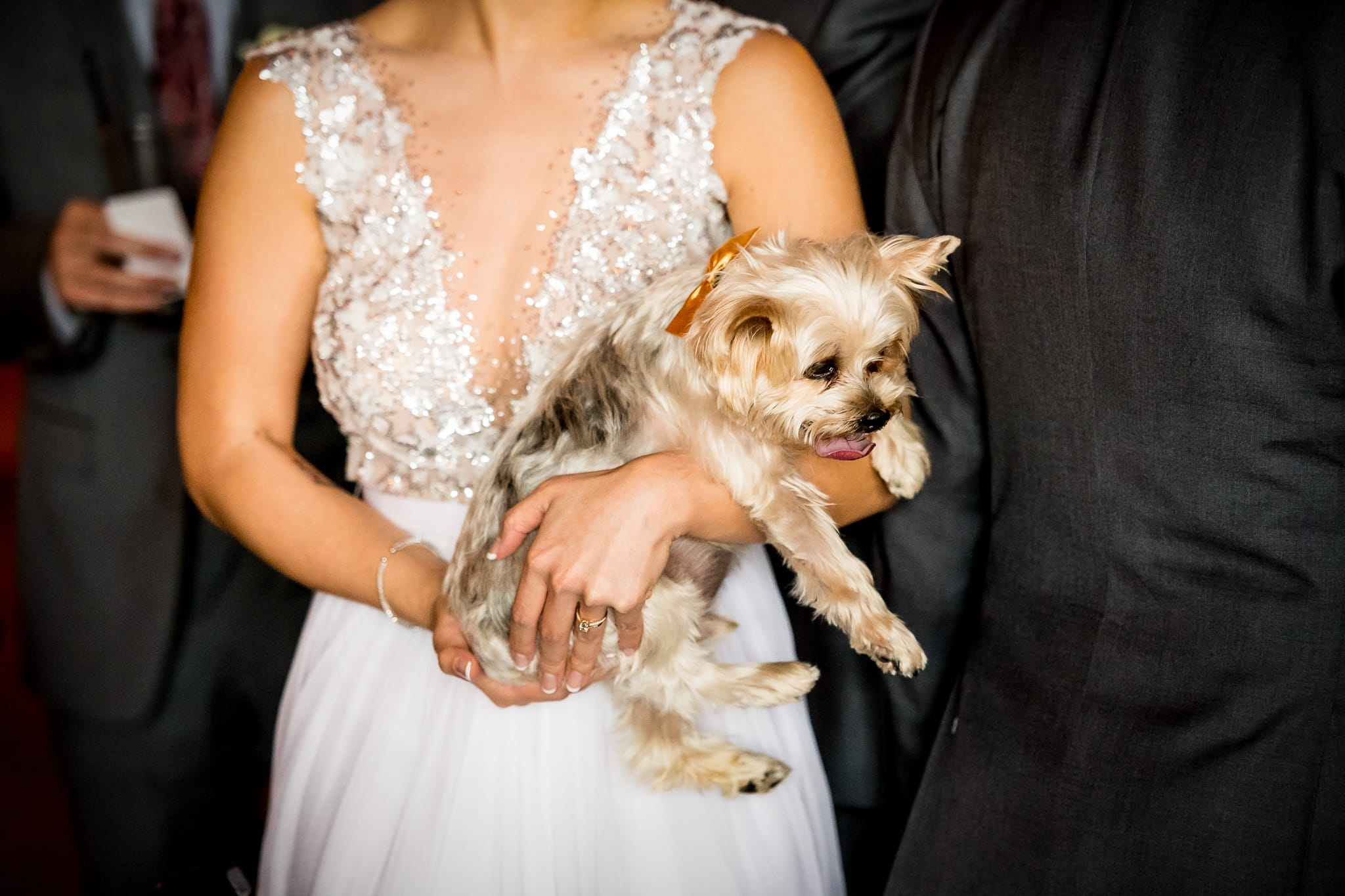 Bride with her dog during the wedding reception at Aster Cafe 2