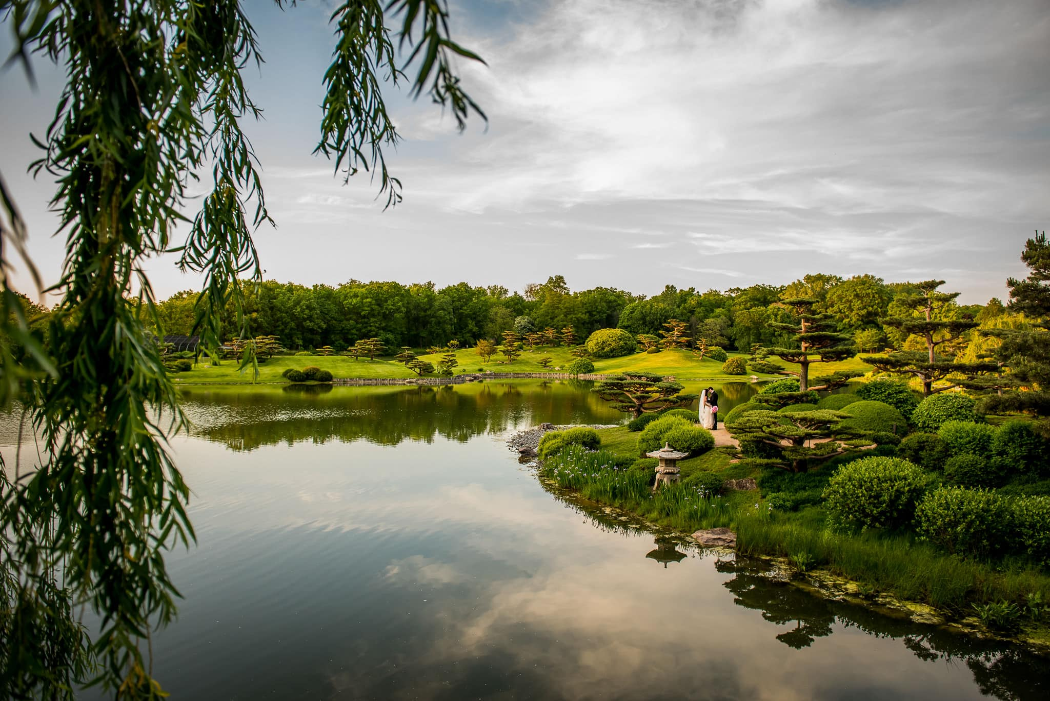 Wide angle destination wedding photo of bride and groom from the Chicago Botanical Garden in the Japanese garden