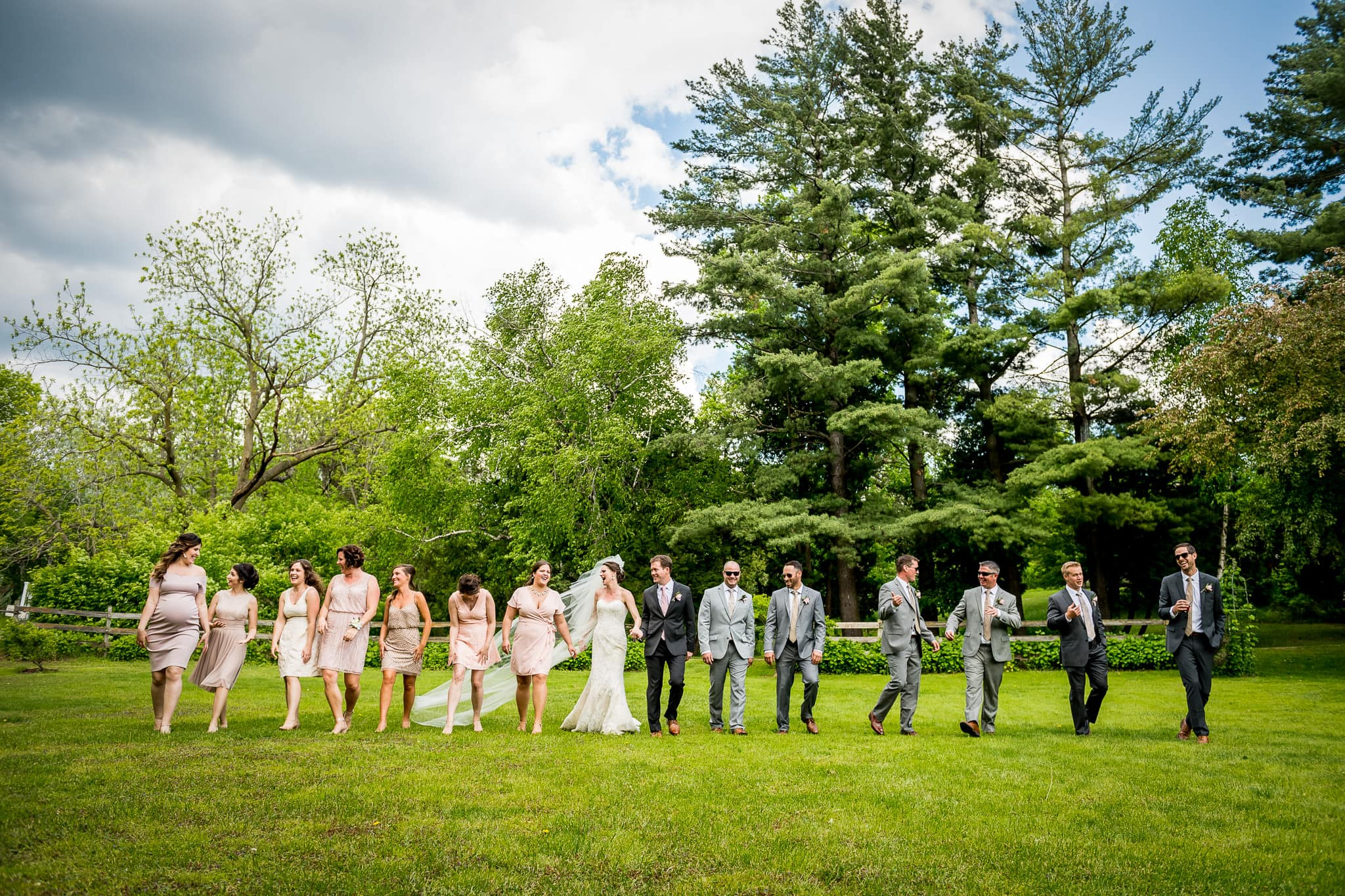 Wide shot of entire wedding party at Camrose Hill Flower Farm