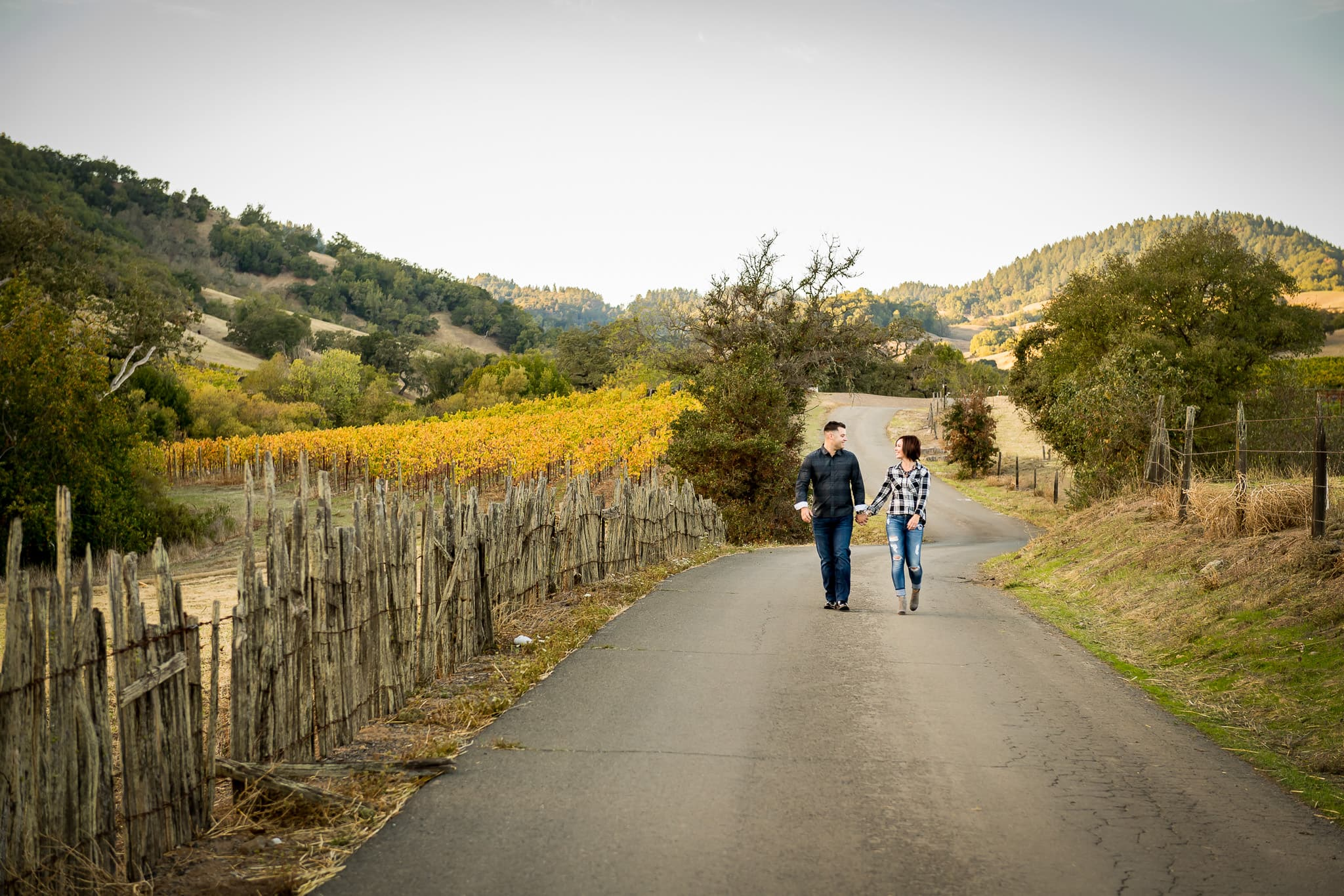 Engaged couple walks the backgrounds of Napa Valley amongst old fences and colorful rows of grapes