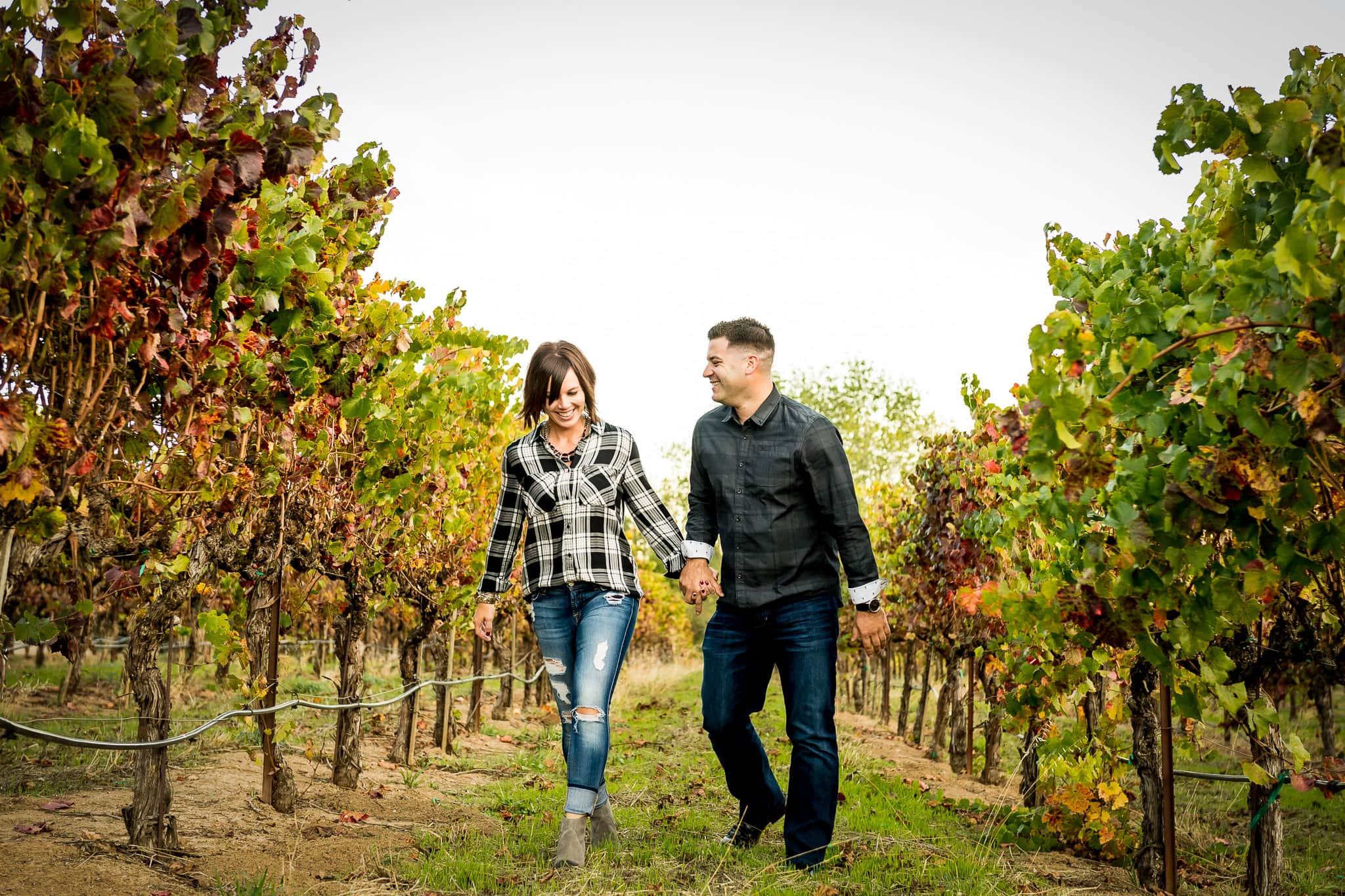 An engaged couple walking and laughing together in between colorful rows of grapes at Artesa Winery's Vineyard in Napa Valley